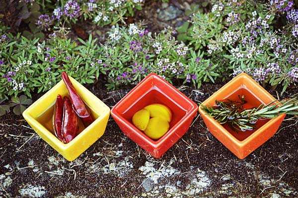 3 small square dishes that contain olive oil, dried chili peppers, garlic, and rosemary. Ingredients for homemade infused chili oil.