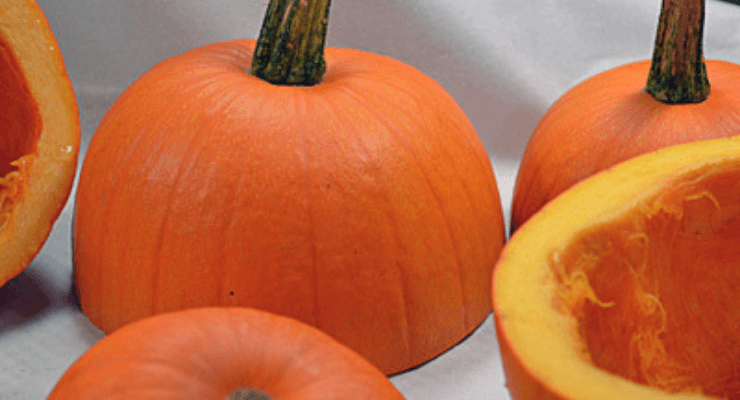 Image of pumpkin cut in half i